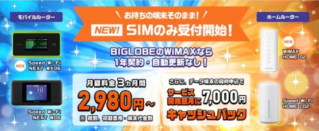 biglobe wimaxキャンペーン